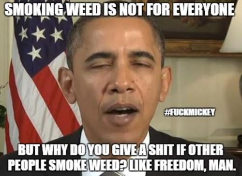 obama.likefreedomman.fuckmickey.1