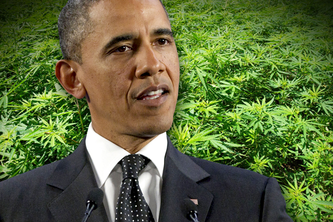 obama_pot_rect