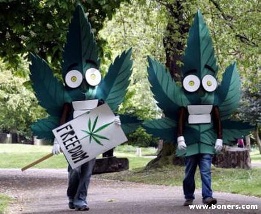weedfreedom.1