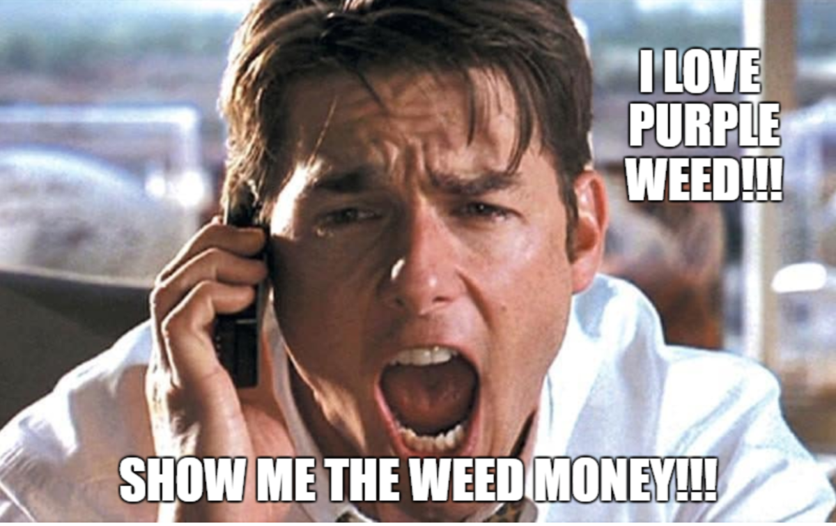 SHOW ME THE MONEY!!! Why Weed Revenues Pale in Comparisson to Drug War Revenues